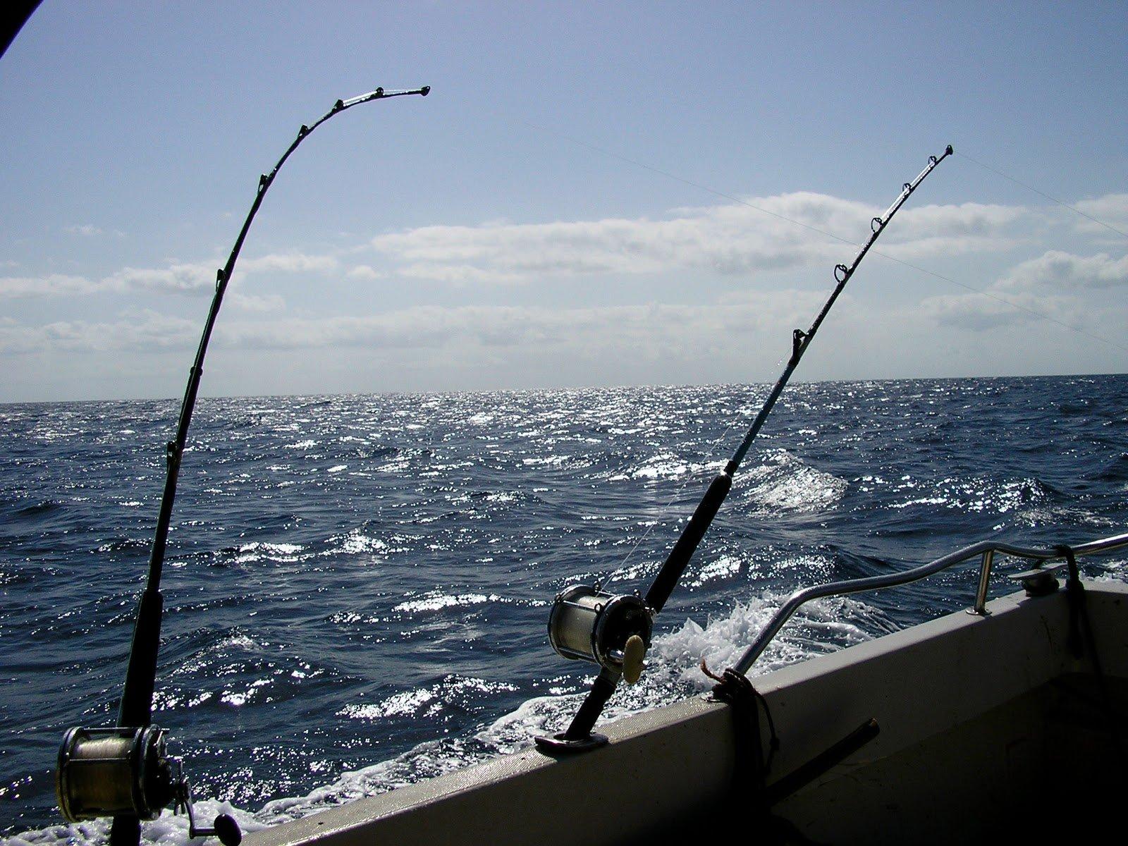 pesca-traina-costiera.jpg