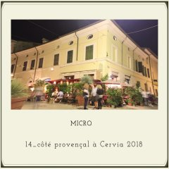 #MICROitalia#estate2018