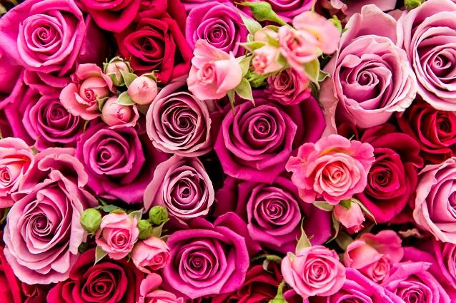 Come-mantenere-i-fiori-freschi.jpg