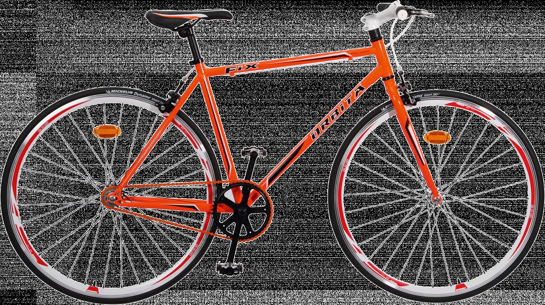 bici-scatto-fisso