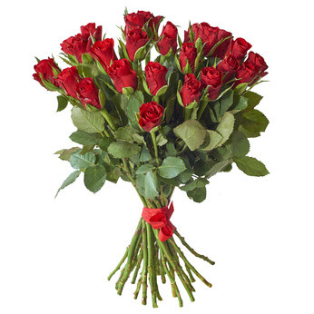 mazzo rose rosse.jpg
