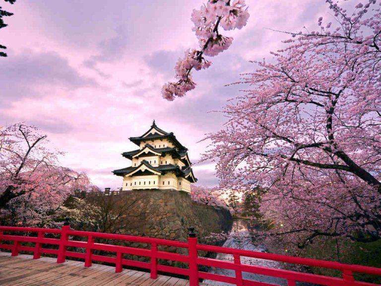 hanami-giappone-castello-Hirosaki-768x576.jpg