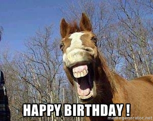 Horse_Happy_Birthday.jpg