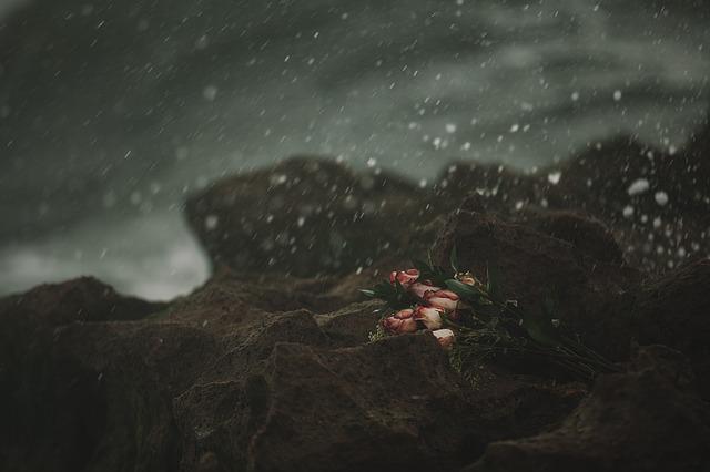 heartbreak-1209211_640.jpg