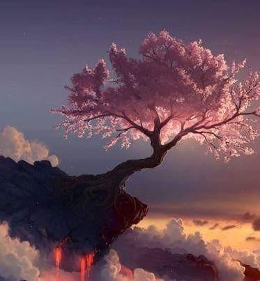 iscoajucwi-la-magia-e-un-modo-di-percepire-cio-che-ci-circonda-la-vita-e-piena-di-magia-per_a.jpg