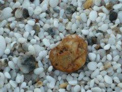 Spiaggia delle Saline   ( Stintino SS )