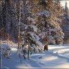 Inverno Russo!