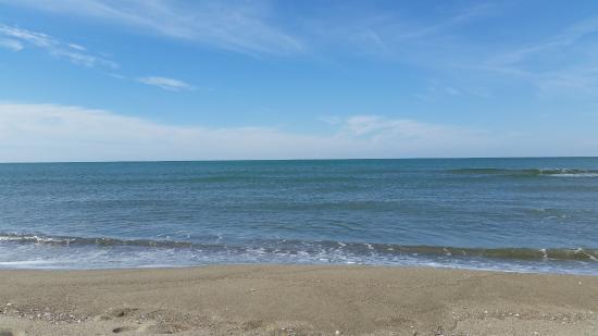 spiaggia-marina-di-vecchiano.jpg.05f6c15b77e2d4b422a4d4cf2fc89b60.jpg