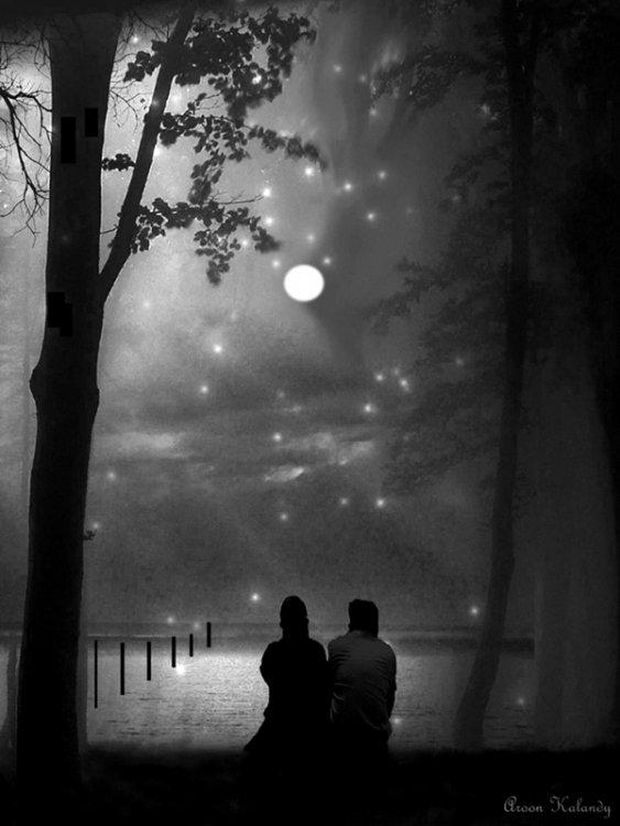 image-starry-night-large-open.jpg