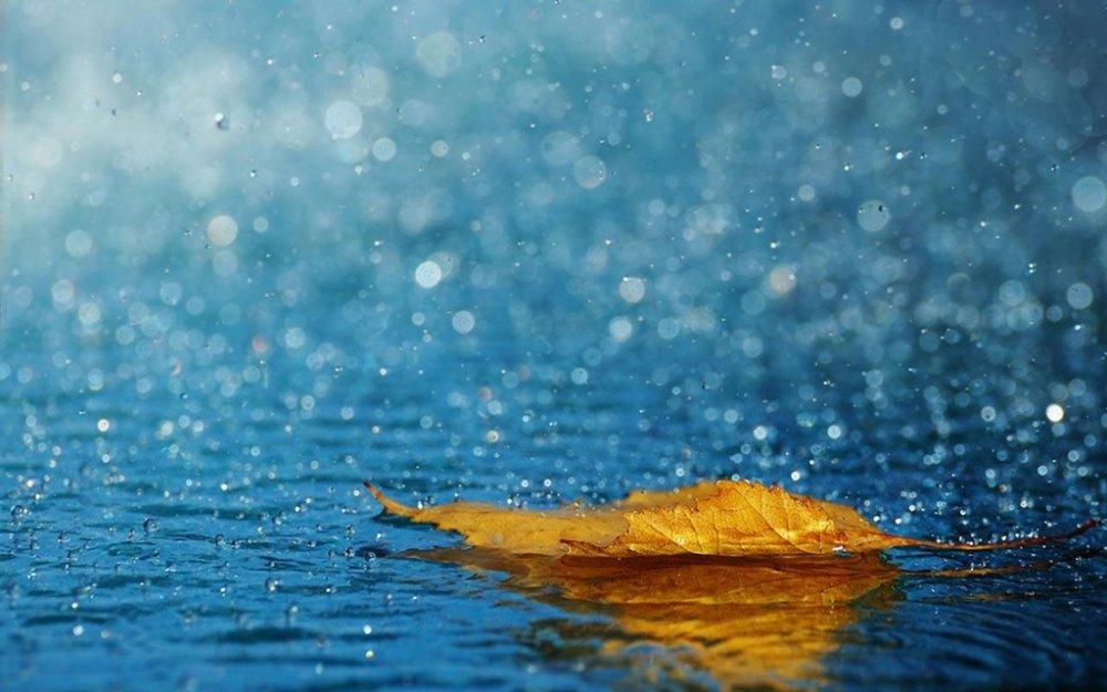 pioggia-1024x640.jpg