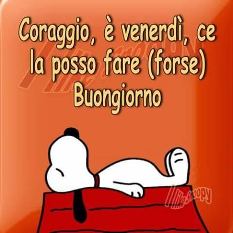 venerdi_079.jpg