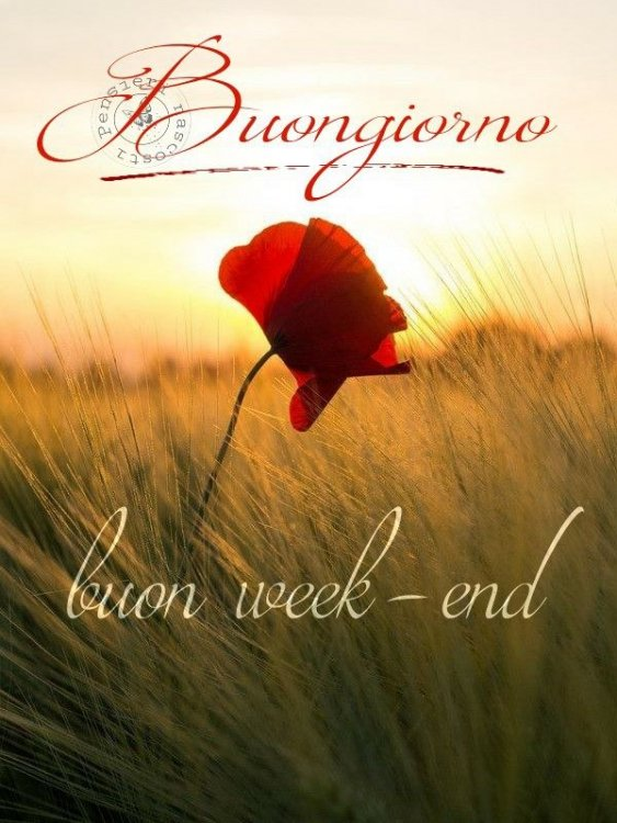 buon-week-end_042.jpg