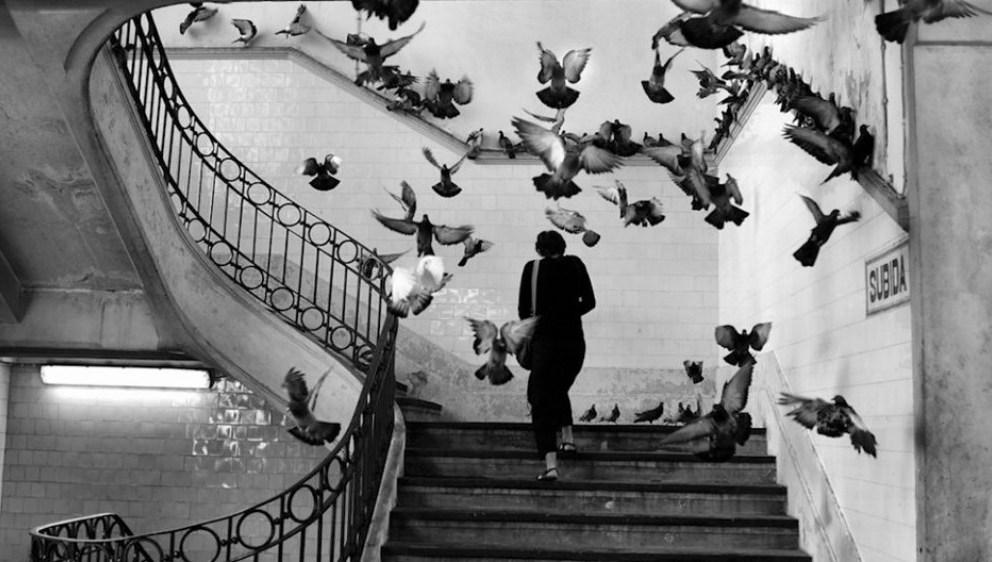mame-arte-Herni-Cartier-Bresson-la-fotografia-parigina-a-palermo.jpg