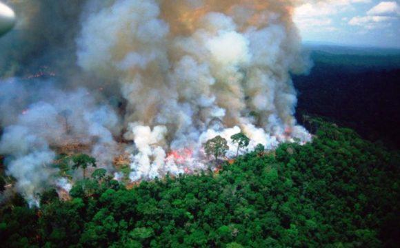 amazzonia-incendio-fiamme-da-3-settimane-580x360.jpg