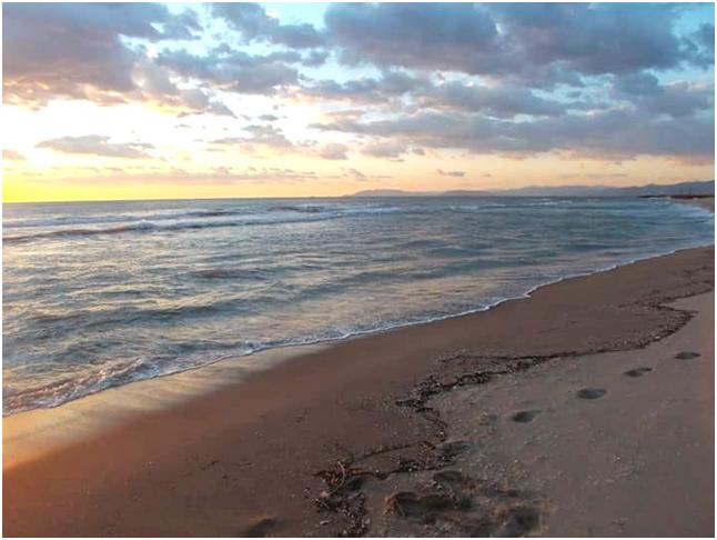 Mare-Viareggio.jpg.643f24005a0140aafe2d5cc33e0bd9db.jpg