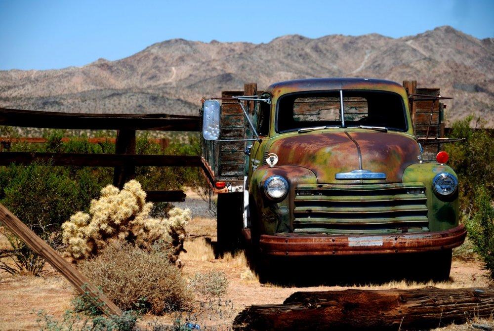 Calico - Mojave_143.JPG