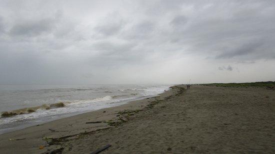 una-bella-spiaggia.jpg.c47a37944ad5eff60034db0ab895a7eb.jpg