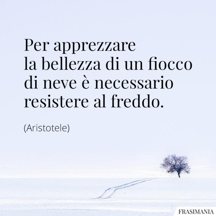 frasi-neve-freddo-aristotele-700x700.jpg