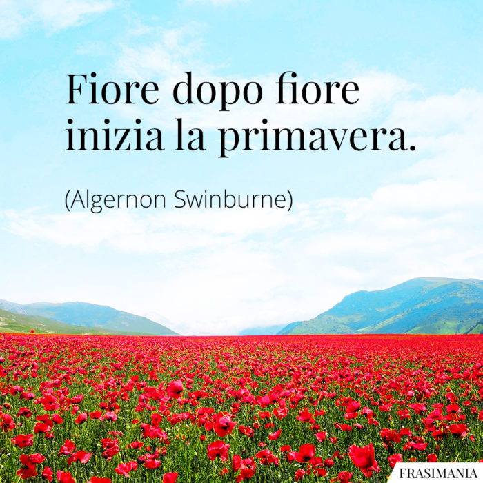 frasi-fiore-primavera-swinburne-700x700.jpg