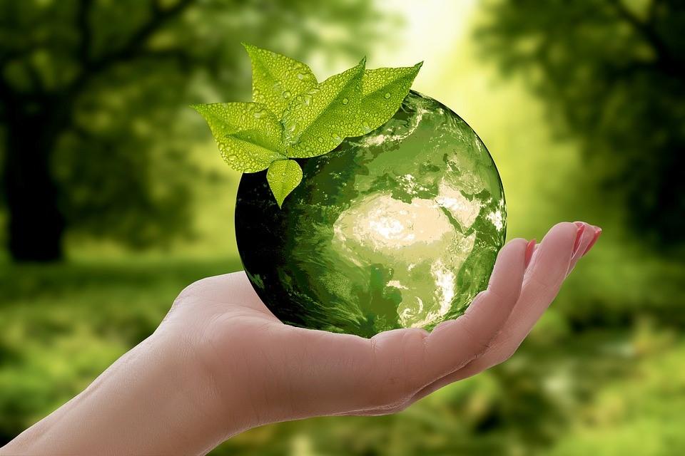 rivoluzione-e-ecologia-prendersi-cura-dellambiente-e-rispettare-la-natura2.jpg