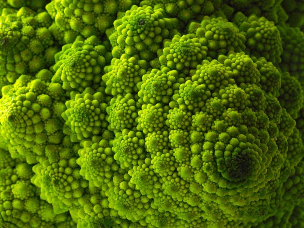 Broccolo-Romano.jpg