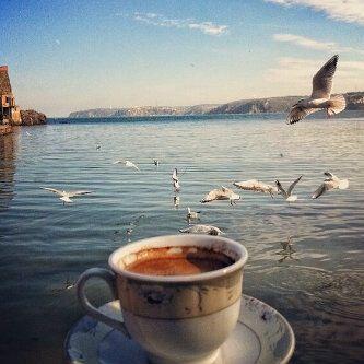 caffest.jpg