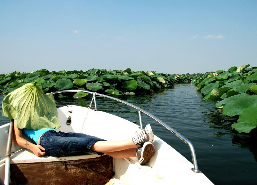 Lago di Mantova (78).jpg