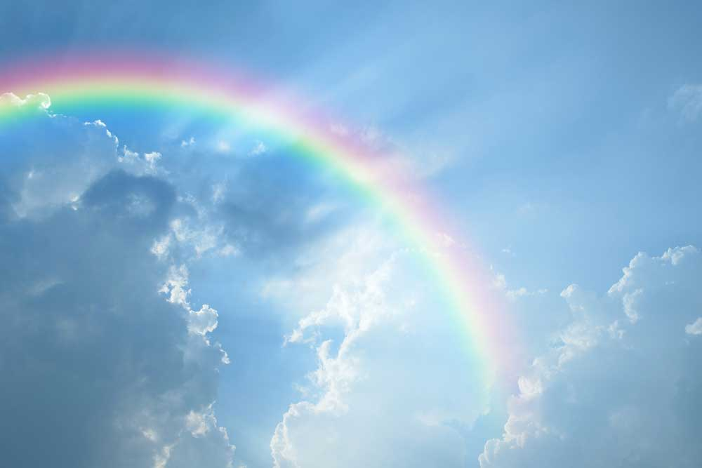 rainbow_274343975_1000.jpg