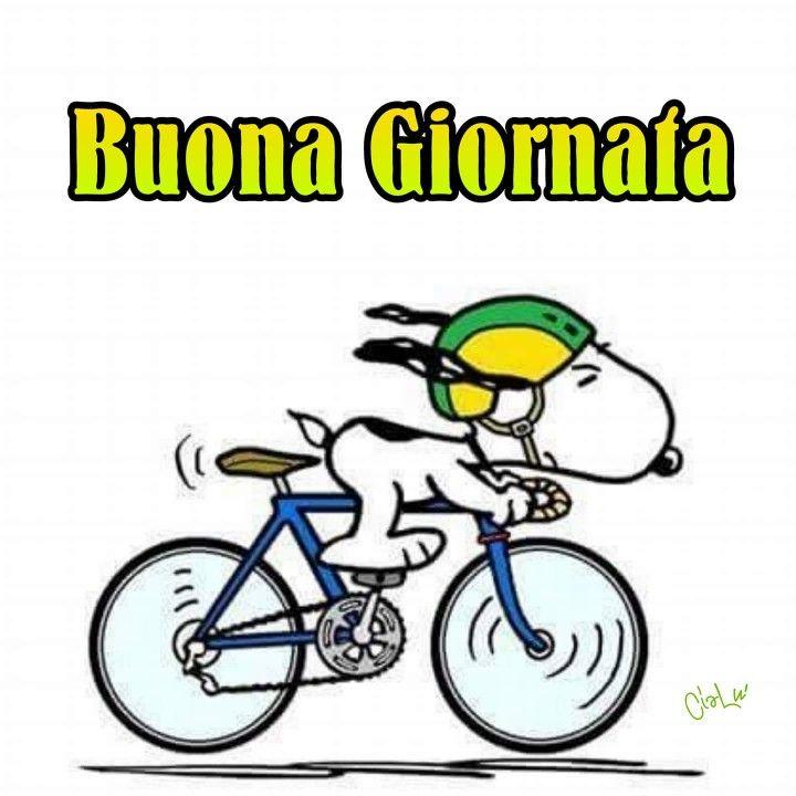 bicicorsa.jpg