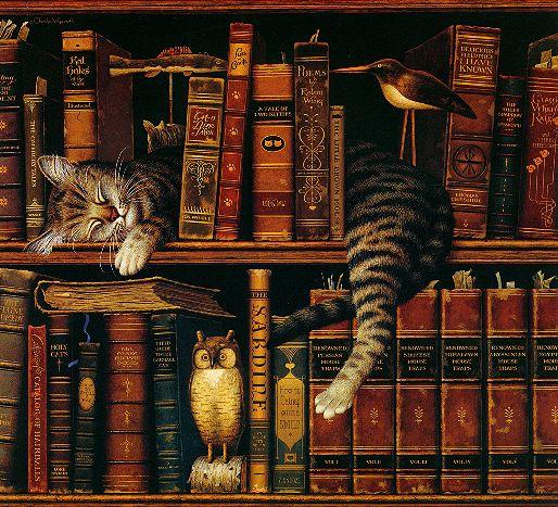 gatta_di_biblioteca.jpg.9f1fee3f390a1170ea4cc47c3a7ef8b7.jpg