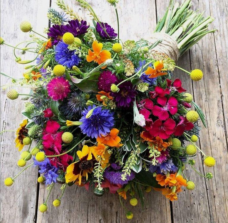 galleria-fiori-di-campo-officina-floreale-2.jpg