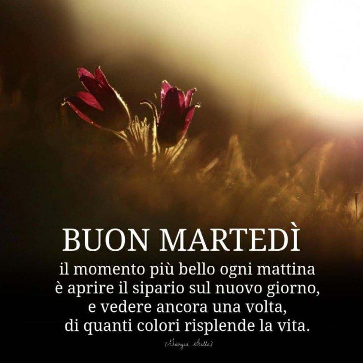 Buon-martedi-003-960x960.jpg