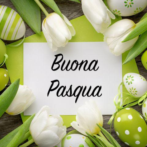 auguri-di-buona-pasqua-fill-480x480.jpeg