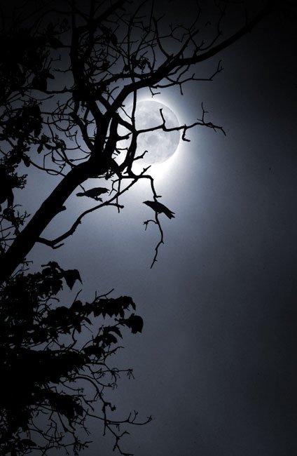 Crow_Moon.jpg