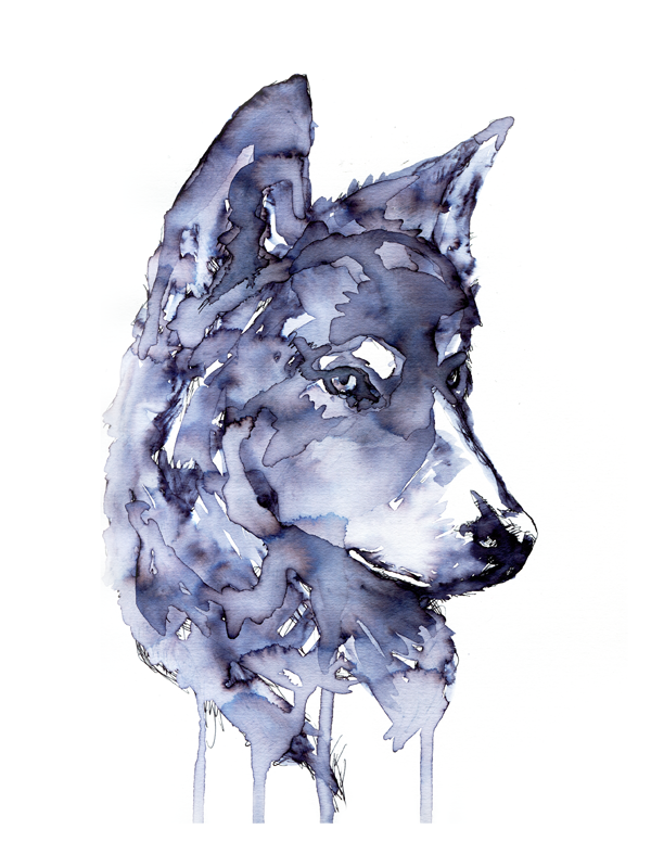 wolf-3.png