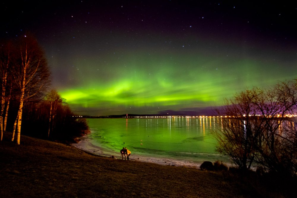 60afa4eae08ee_AuroraborealeallArktikumspark-Rovaniemi(4).thumb.JPG.1fa9a9ba8aab84298bc50ea78883ccec.JPG