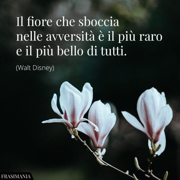 frasi-fiore-avversita-bello-disney-700x700.jpg.0c21cf05f879ca994880ee83b329b82c.jpg