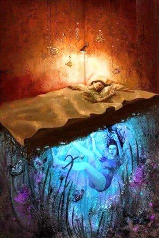 in the dreams