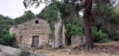 Vicoli & paesaggi 🏞🥰 Montelepre