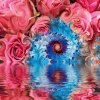 mystical flowers