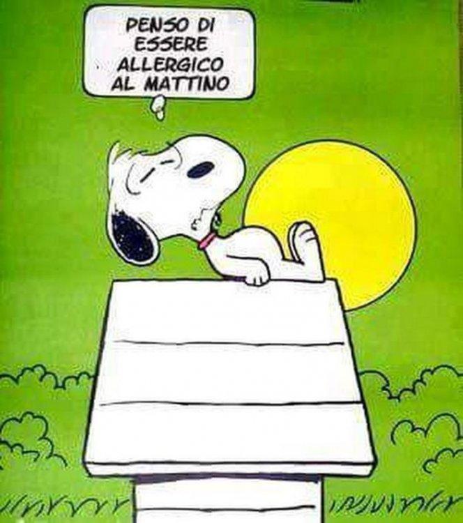 Immagini-Buongiorno-Snoopy-8.jpg