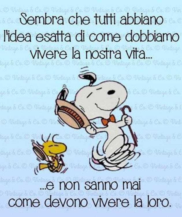 Snoopy-frecciatine.jpg