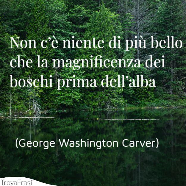 george-washington-carver-non-c-niente-di-pi-bello.jpg